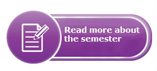 Read More About The Semester