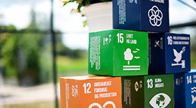 Picture of boxes with the Sustainable Development Goals printed on.