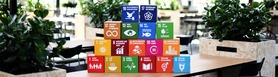 Picture of boxes with the sustainable development goals.